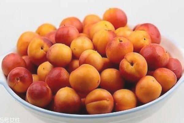 杏干孕妇可以吃吗 吃杏子会流产吗