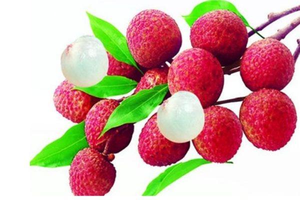 荔枝可以降血糖吗 荔枝到底是升糖还是降糖