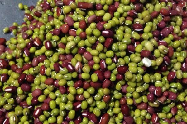 红豆可以和绿豆一起吃吗 红豆和绿豆的价值