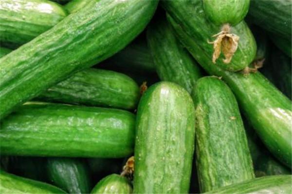 黄瓜为什么能减肥 黄瓜减肥的原因