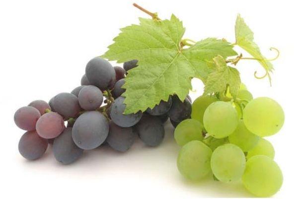 解酒的水果有哪些 吃这6种食物解酒好