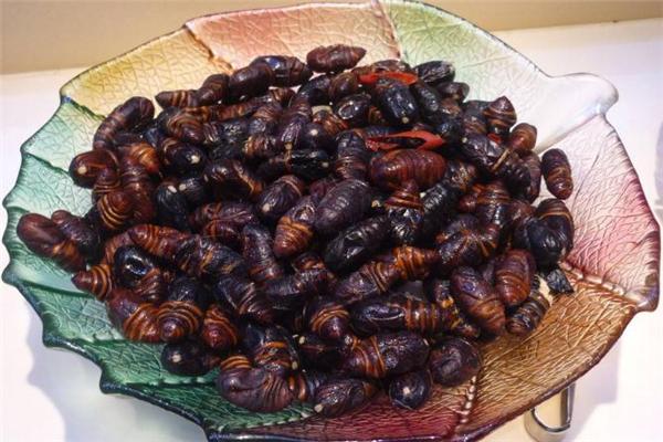 蚕蛹吃多了会中毒吗 吃蚕蛹中毒的表现