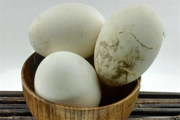 鹅蛋能预防胎儿黄疸吗 鹅蛋能去胎毒吗