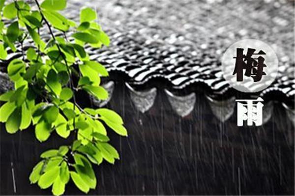 2019梅雨季节是什么时候 梅雨季节是什么