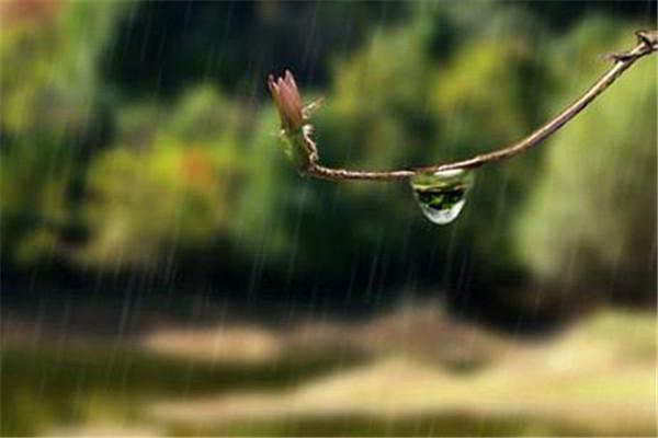 梅雨季节怎么防潮 梅雨季节防潮的方法