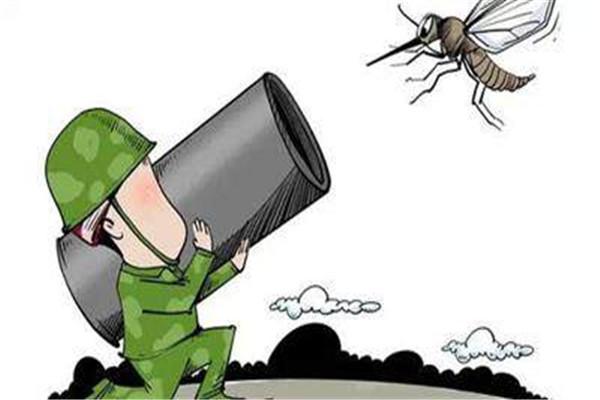 蚊子怕什么植物 蚊子怕什么