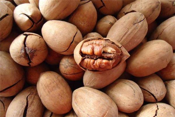 哺乳期吃碧根果回奶吗 产妇能吃碧根果吗