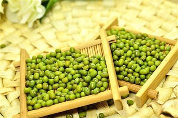 绿豆放了一年还能吃吗 陈绿豆可以吃吗