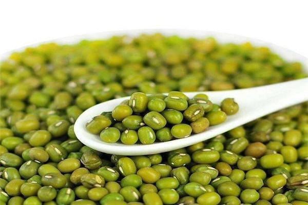 绿豆放冰箱里冻上好煮是真的吗 绿豆放冰箱里煮烂的快
