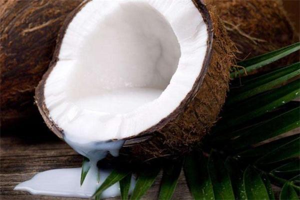 椰子肉是硬的还是软的 椰子肉是硬的能吃吗
