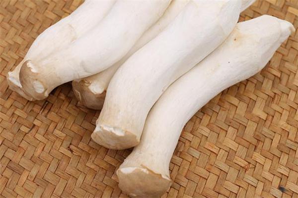 杏鲍菇热量高吗 杏鲍菇减肥能吃吗