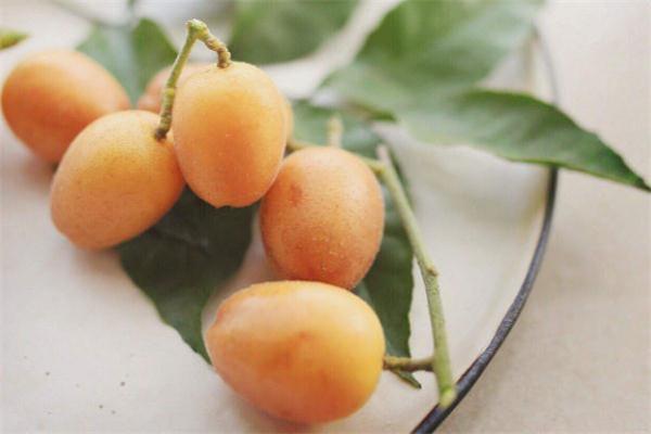 哺乳期可以吃黄皮果吗 喂奶能吃黄皮果吗