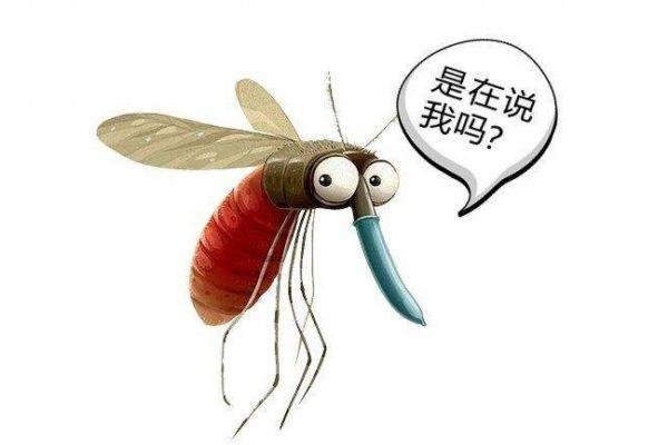 蚊子喜欢咬什么人 蚊子咬人的原因