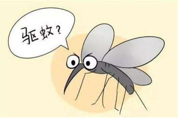 被蚊子叮后出现这些症状赶紧处理 怎么有效防蚊