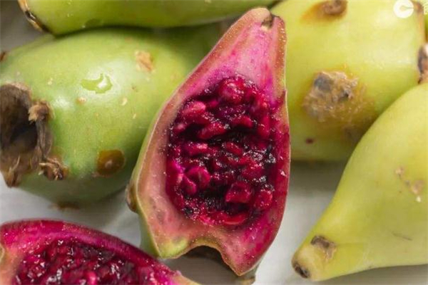 什么人不能吃仙人掌果 仙人掌果不适宜什么人吃