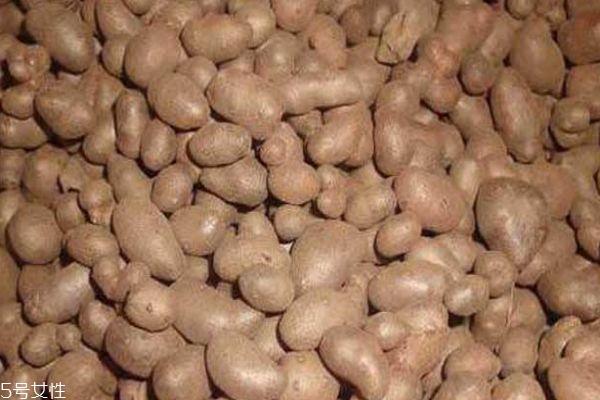 山药豆和山药有什么关系 山药豆的好处有什么