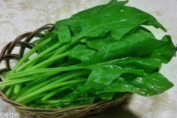 菠菜有什么功效 菠菜的营养价值是什么