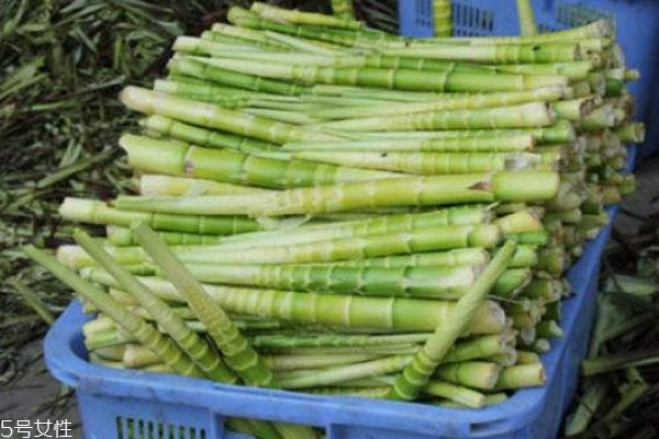 竹笋有什么营养价值呢 竹笋的功效有什么呢