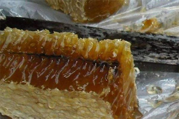 蜂巢蜜怎么吃 蜂巢蜜可以直接吃吗