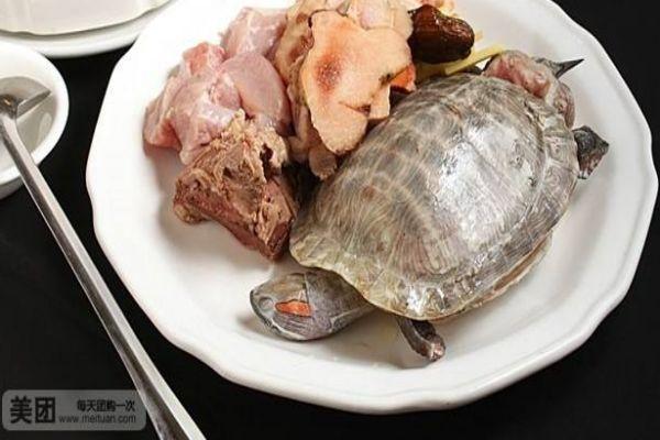 乌龟汤怎么做呢 乌龟汤有什么好处呢