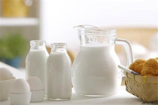 减脂能喝牛奶吗 什么牛奶可以减脂的时候喝