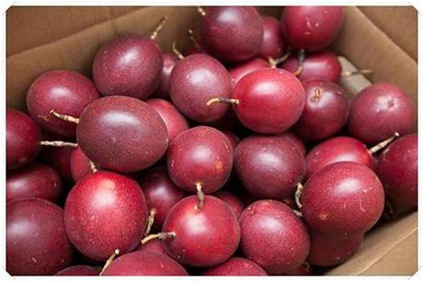 百香果吃多了会胖吗 百香果的吃法