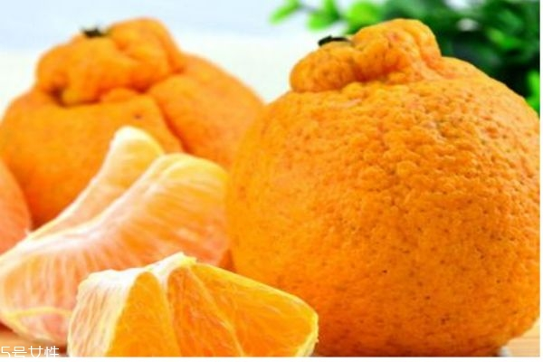 什么是丑橘呢 丑橘有什么营养价值呢