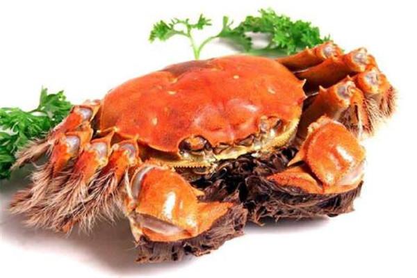大闸蟹和大螃蟹的区别是什么 本质上有区别