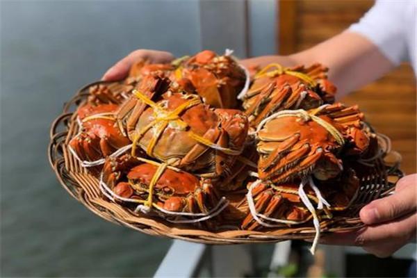螃蟹壳可以吃吗 螃蟹的营养价值