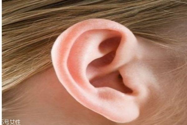 什么是丰耳垂呢 如何丰耳垂呢