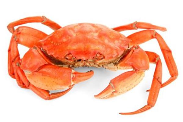 螃蟹可以冷冻吗 螃蟹能不能冷冻