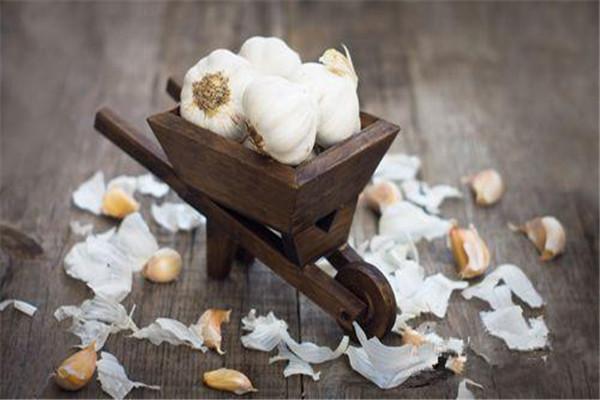 大蒜和蜂蜜能一起吃吗 大蒜不能和什么一起吃