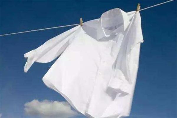 白衣服上的奶茶渍怎么洗掉 奶茶弄到白色衣服上怎么洗