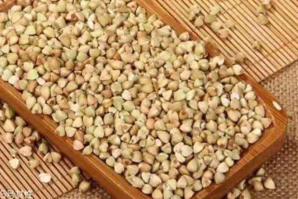 什么是荞麦呢 荞麦有什么用呢