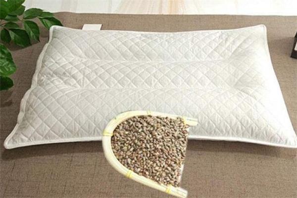 柏树籽做枕头的功效 柏树籽怎么做枕头