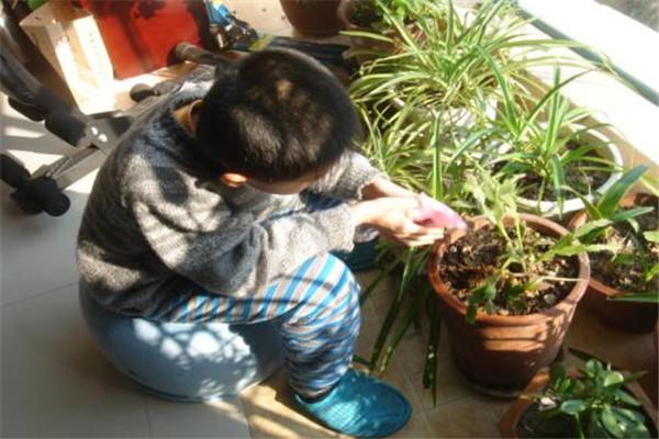 浇花是早上还是晚上 浇花什么时候浇