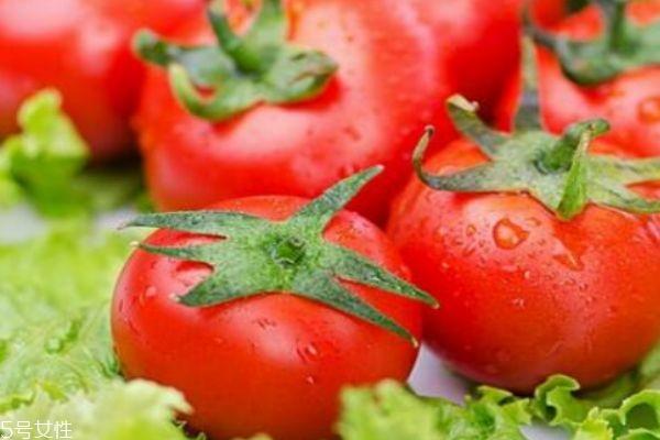 西红柿有什么营养价值呢 吃西红柿有什么好处呢