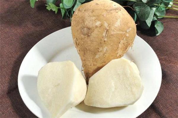 凉薯热量是多少 凉薯和苹果谁热量高