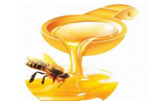 百花蜜是怎么来的呢 百花蜜比较好的品牌有什么呢
