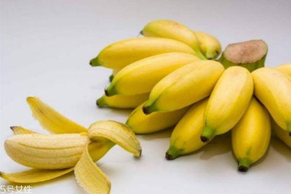 芭蕉有什么营养价值呢 芭蕉多少钱一斤呢