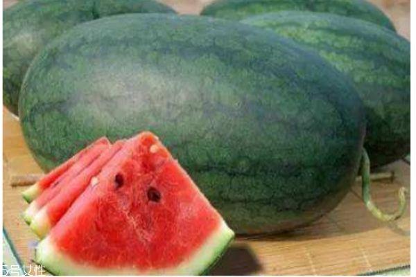 什么是黑美人瓜呢 黑美人瓜有什么作用呢