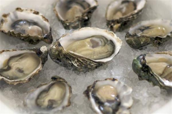 生蚝冷冻还是冷藏 带壳的生蚝冷藏可以保存多久