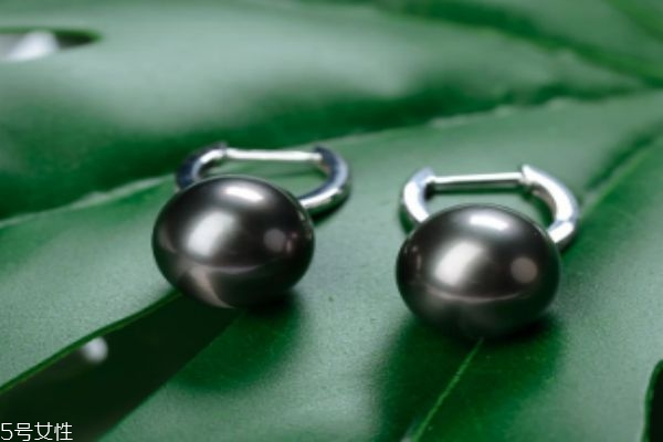 黑珍珠应该怎么挑选呢 黑珍珠应该怎么保养呢