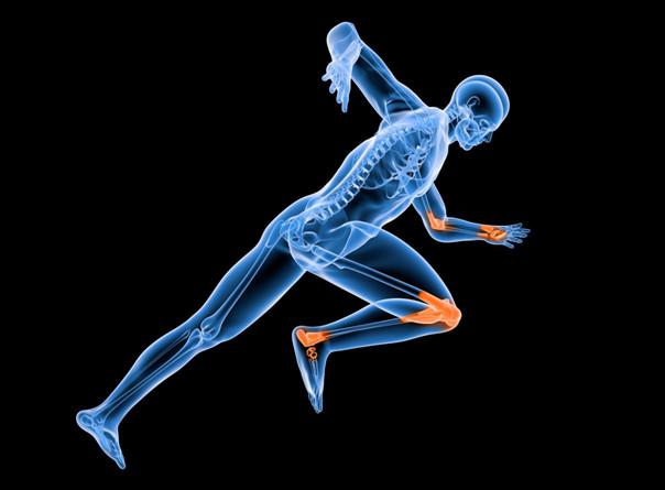 氨糖软骨素是什么?日常生活中如何补充氨糖软骨素