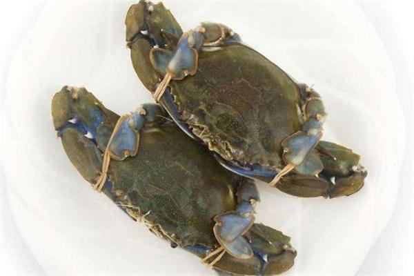 青蟹为什么那么贵 青蟹贵还是花蟹贵