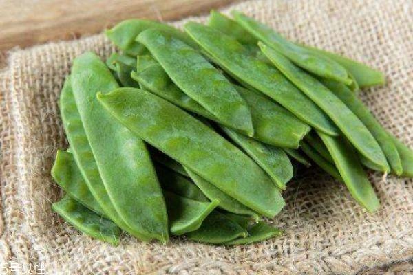 吃荷兰豆有什么作用呢 荷兰豆生长在什么环境里呢