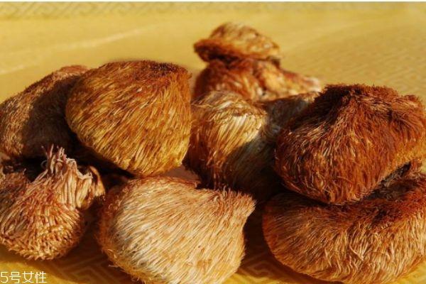 什么是猴头菇呢 猴头菇有什么营养价格呢