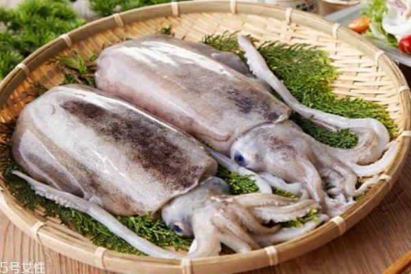 墨鱼是鱼吗 墨鱼有什么营养价值呢