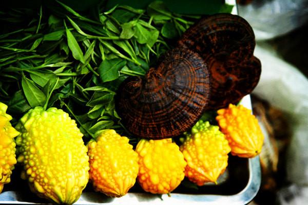 金铃子的作用有哪些 金铃子的营养价值
