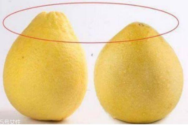 柚子没有水分怎么办 柚子水分少怎么办